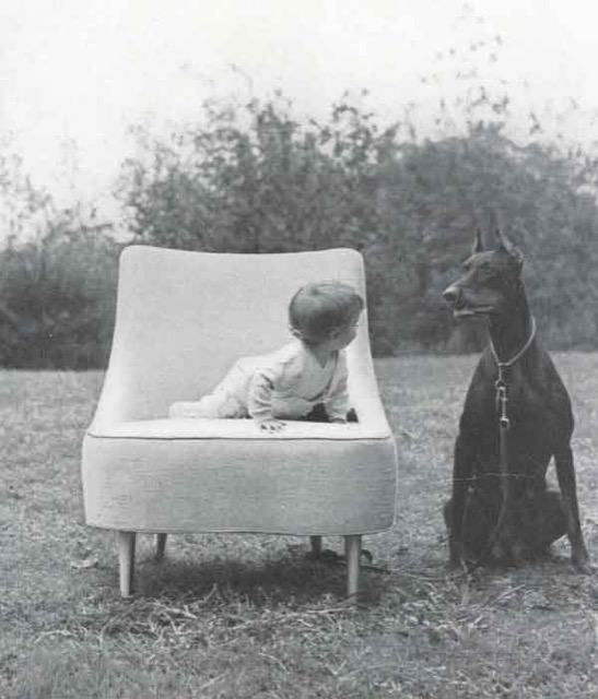 Dunbar catalog of 1952 showing baby in tear drop chair with Doberman
