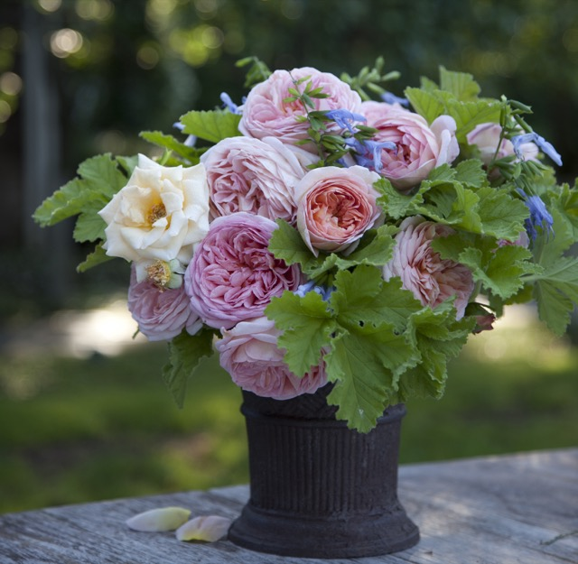 Garden Inspirations from Charlotte Moss holds beautiful bouquets