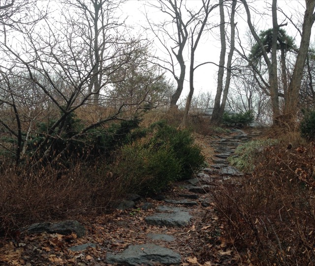 The path leading to Mt Tom in Manhattan. Image © Saxon Henry.