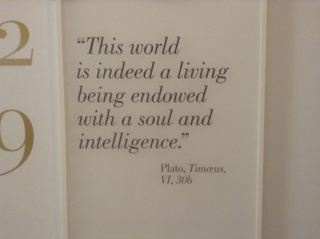 This quote by Plato, displayed at the entrance to the exhibition, certainly described how da Vinci approached his work and his life. Image © Saxon Henry.