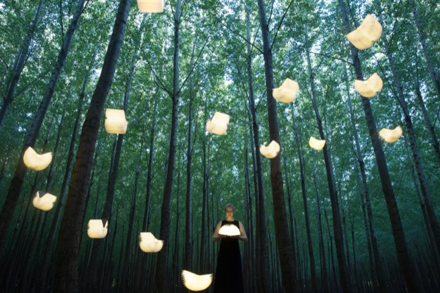 The Lumio, shown here hanging from a lush canopy of trees.